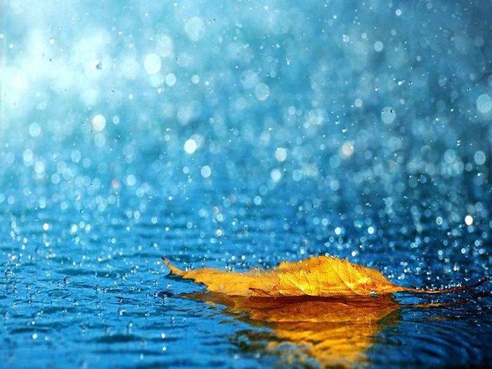 загадки про осінь