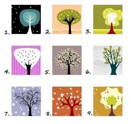 Обери дерево — пізнай себе!