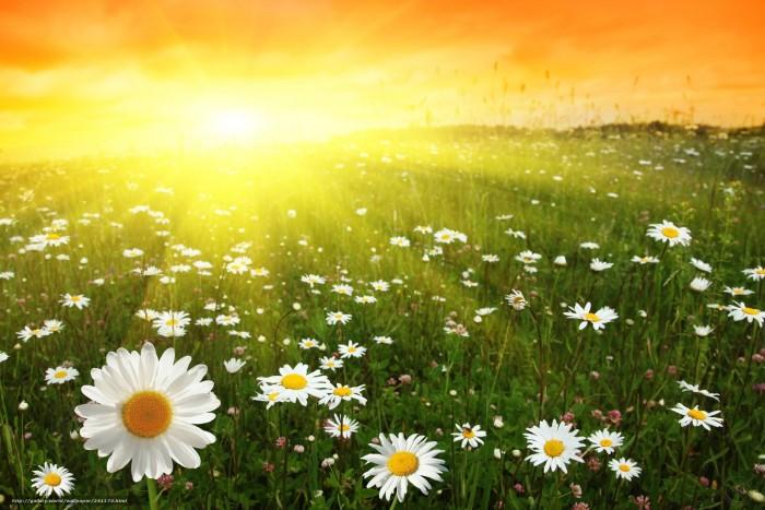 Загадки про природу: рассвет, закат