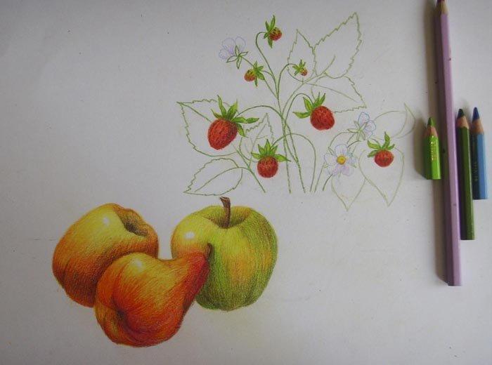 Як намалювати натюрморт олівцем, фото 10