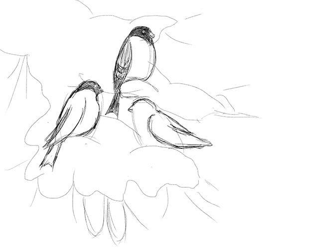 Рисуем снегирей на ветке. Шаг 6