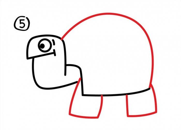 Как нарисовать черепаху карандашом поэтапно, фото 26