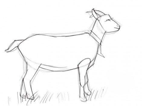 Рисуем козу — символ 2015 года