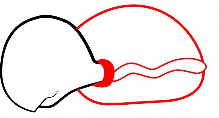 Как нарисовать черепаху карандашом поэтапно, фото 8