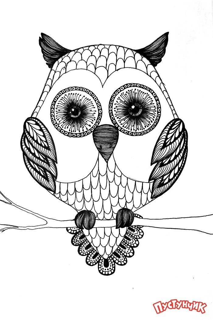 Зентангл животные - сова, фото 9