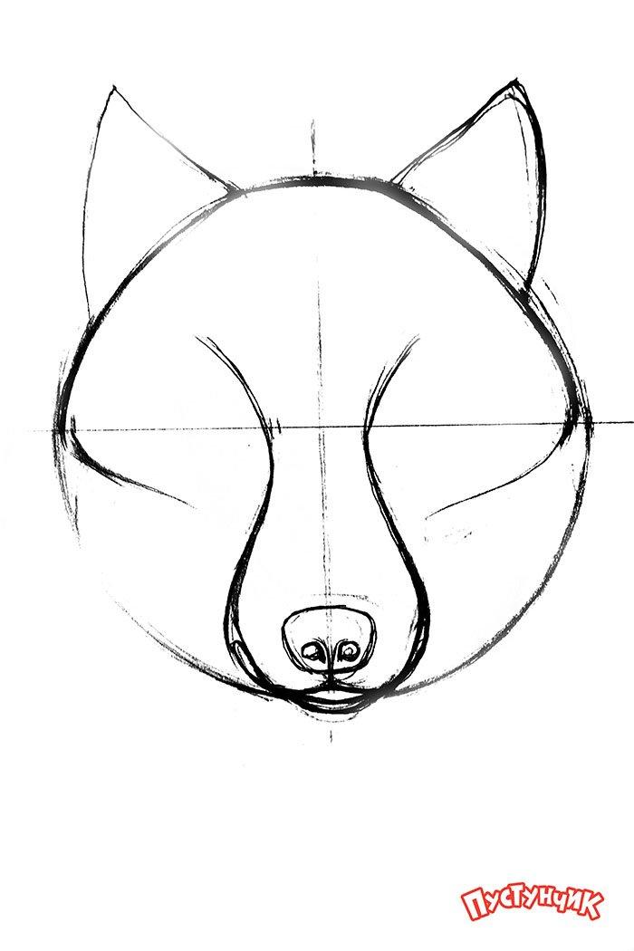 Як намалювати вовка крок за кроком, фото 2