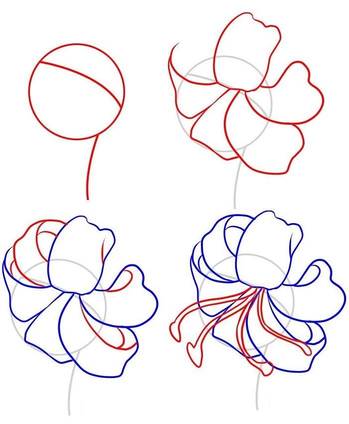 Как нарисовать цветок - Лилия, фото 1