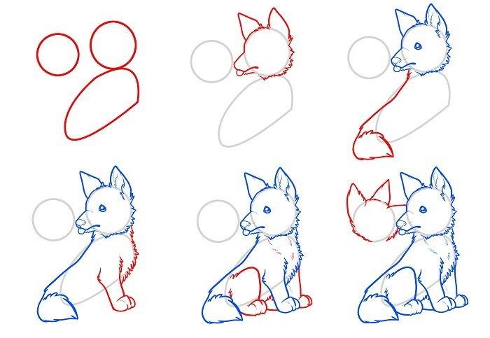 Как нарисовать волка урок 2