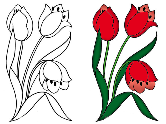 Как нарисовать тюльпан своими руками