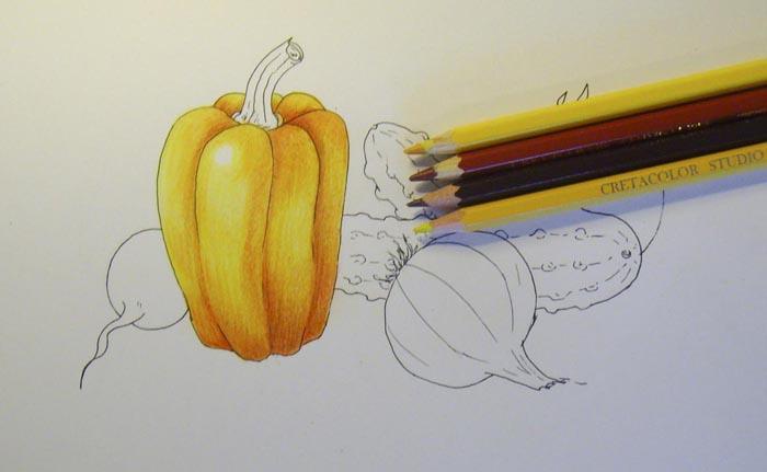 Как рисовать овощи