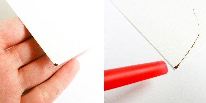 Як малювати птицю на гілці аквареллю крок 1