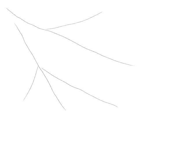 Рисуем снегирей на ветке. Шаг 1