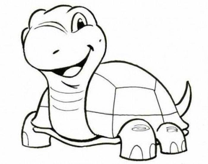 Как нарисовать черепаху карандашом поэтапно, фото 6