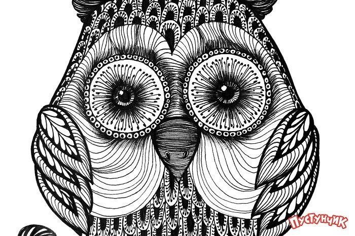 Зентангл тварини - сова, фото 13