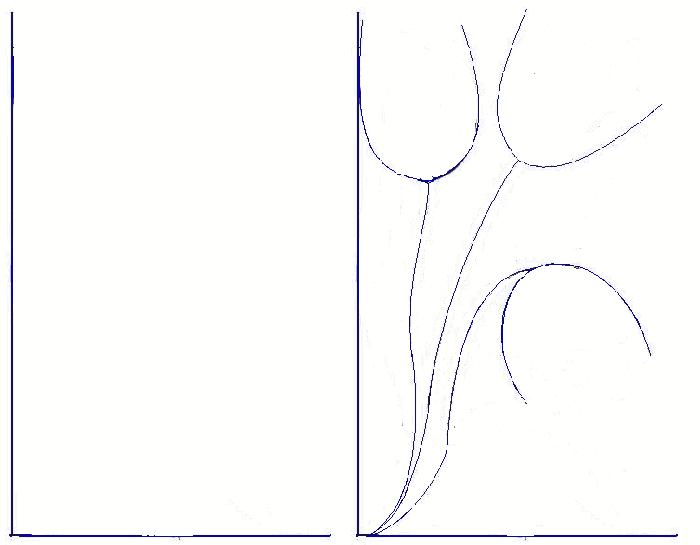 Как нарисовать тюльпаны Схема 2