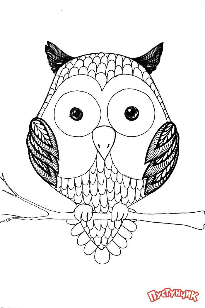 Зентангл животные - сова, фото 6