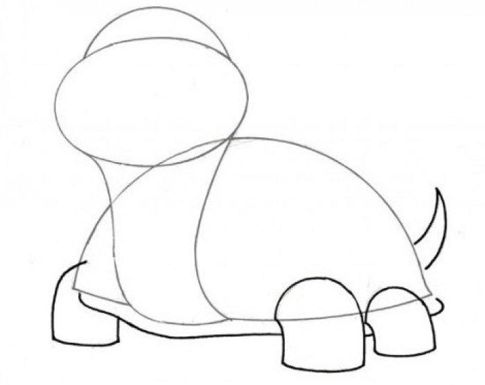 Как нарисовать черепаху карандашом поэтапно, фото 3