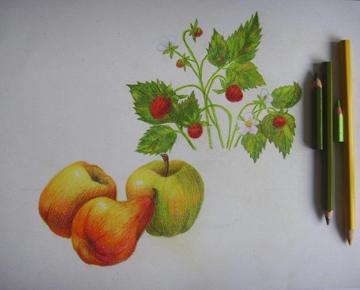 Як намалювати натюрморт олівцем, фото 11