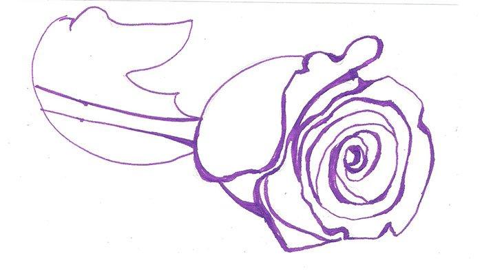 Как нарисовать розу шаг за шагом – схема, фото 4