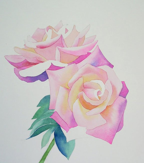 Как нарисовать розу шаг за шагом – схема, фото 19