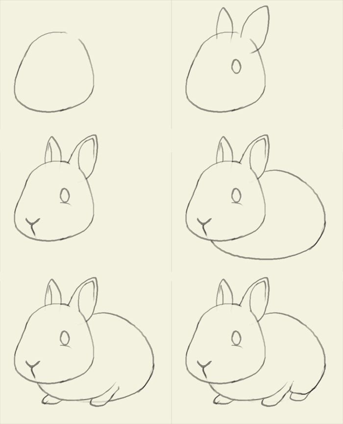 Як намалювати зайчика поетапно, фото 12