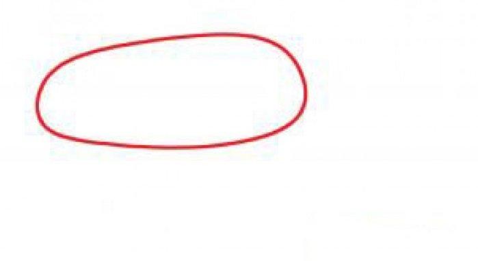 Як намалювати мишу, фото 23