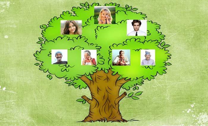 Родинне дерево