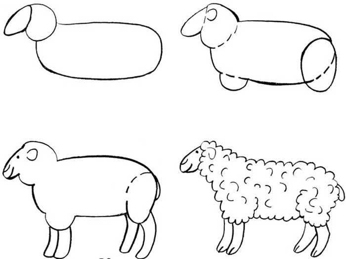 Как красиво нарисовать барашка схема 5
