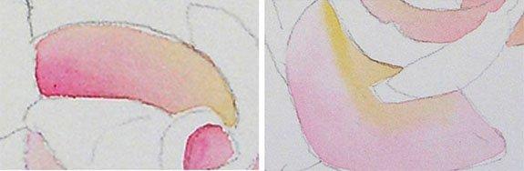 Как нарисовать розу шаг за шагом – схема, фото 18