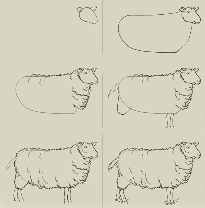 Малюємо овець і баранців