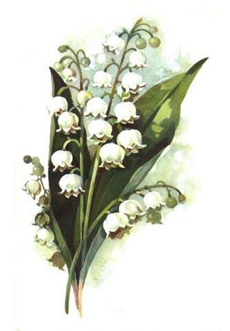 Малюємо весняні квіти