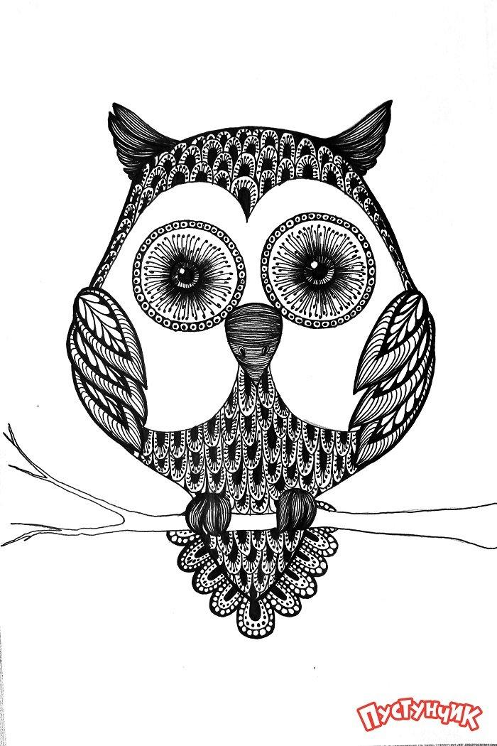 Зентангл тварини - сова, фото 12