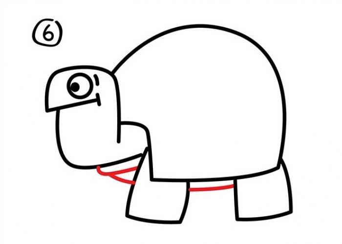 Как нарисовать черепаху карандашом поэтапно, фото 27