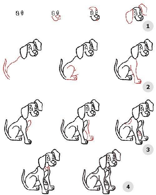 Как нарисовать собаку, схема 5