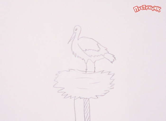Как нарисовать аиста, шаг 3