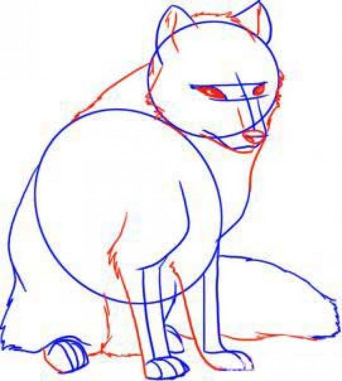 Як намалювати лисицю поетапно, фото 9