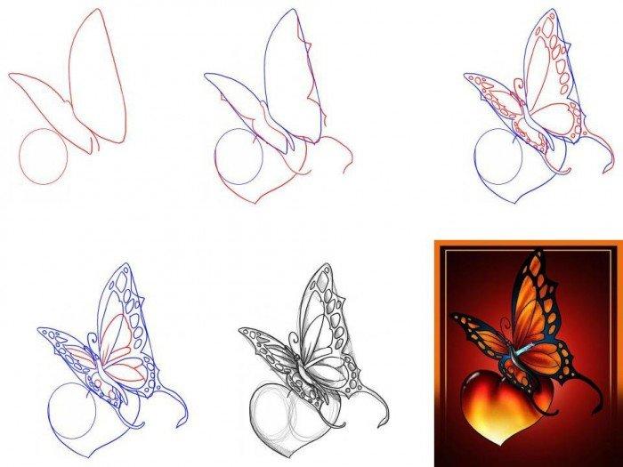 Як намалювати метелика крок за кроком, фото 7