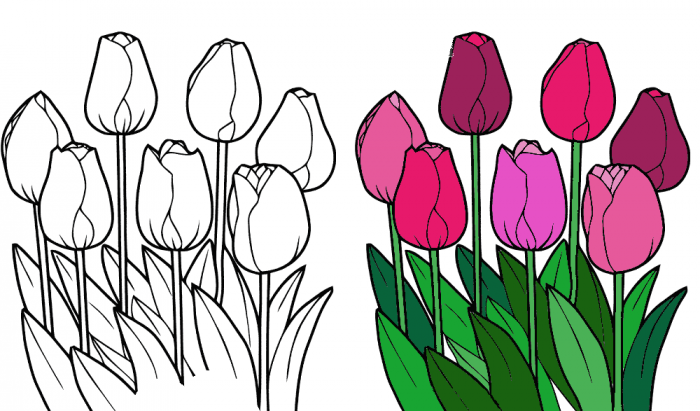 Рисуем тюльпаны