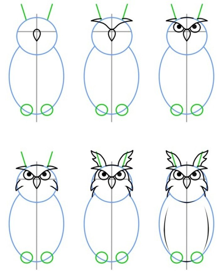Как нарисовать суровую сову