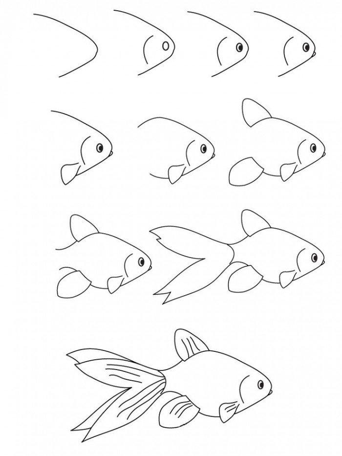 Как нарисовать рыбку. Схема 4