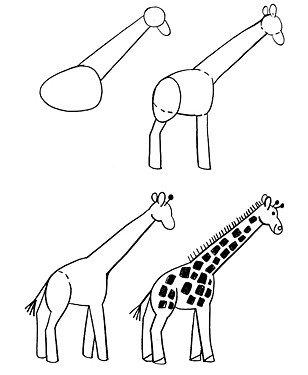Как нарисовать жирафа поэтапно, фото 10