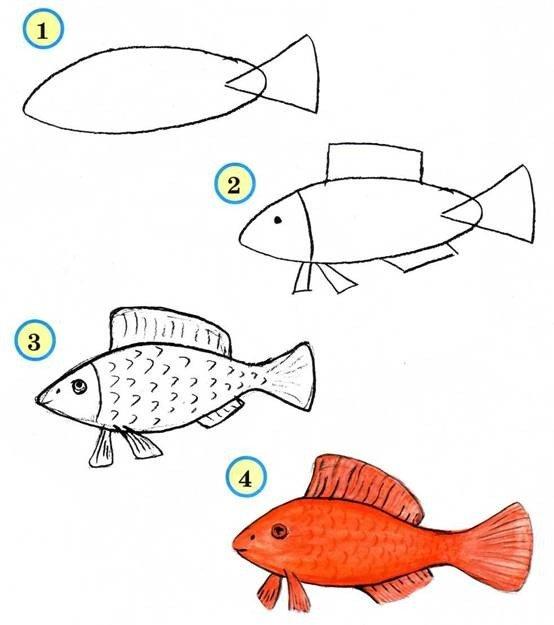 Как быстро нарисовать рыбок