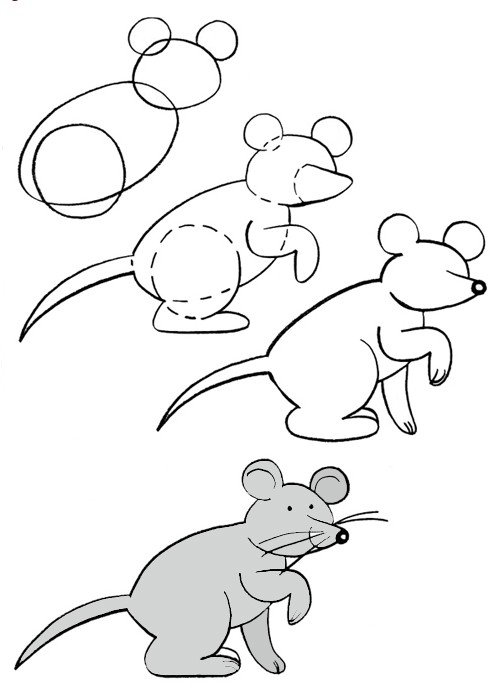 Як намалювати мишу, фото 29
