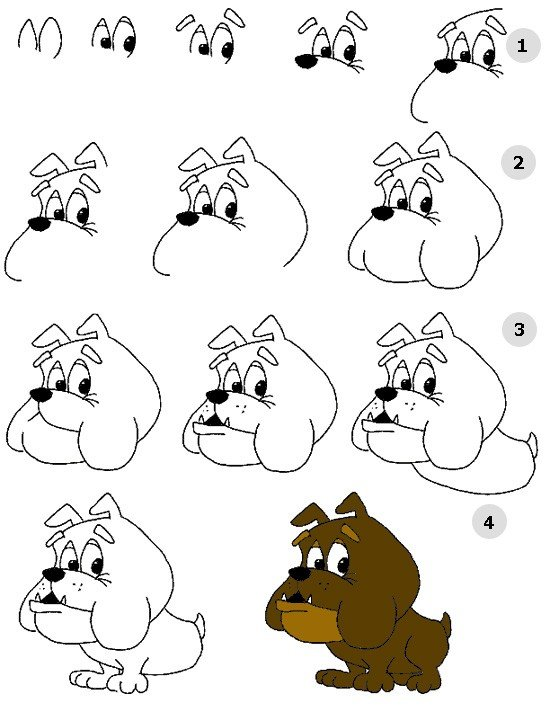 Как нарисовать собаку, схема 2