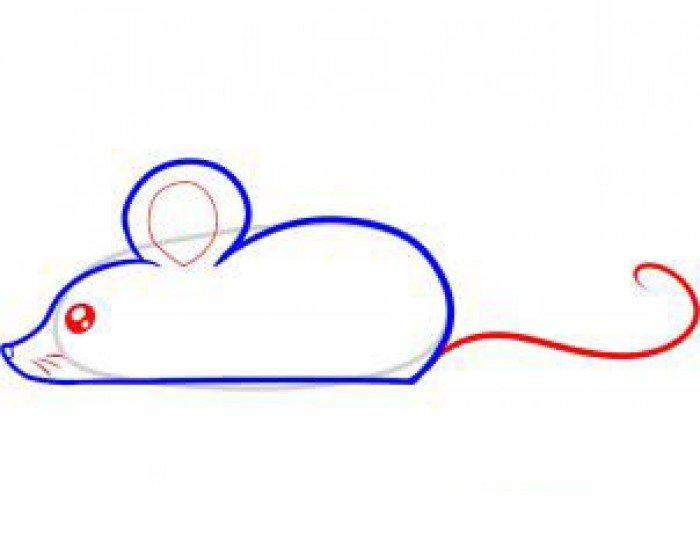 Как нарисовать мышку поэтапно, фото 25