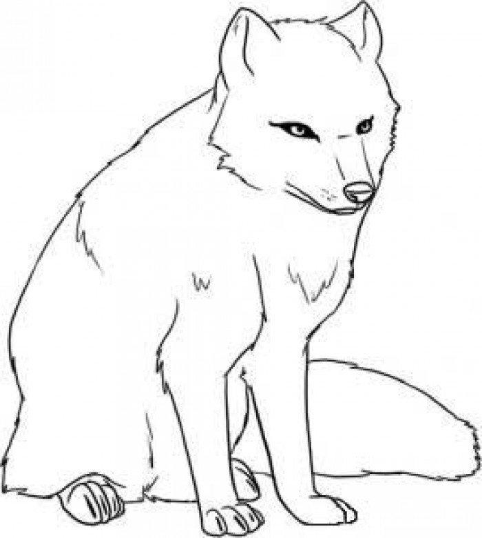 Як намалювати лисицю поетапно, фото 11