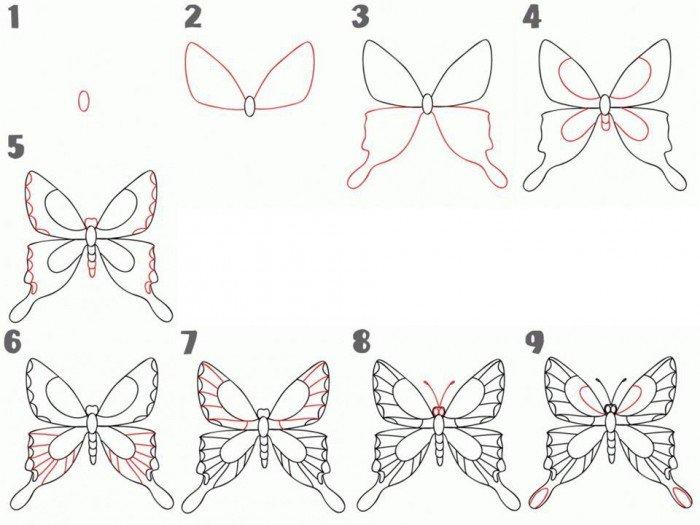 Як намалювати метелика крок за кроком, фото 5