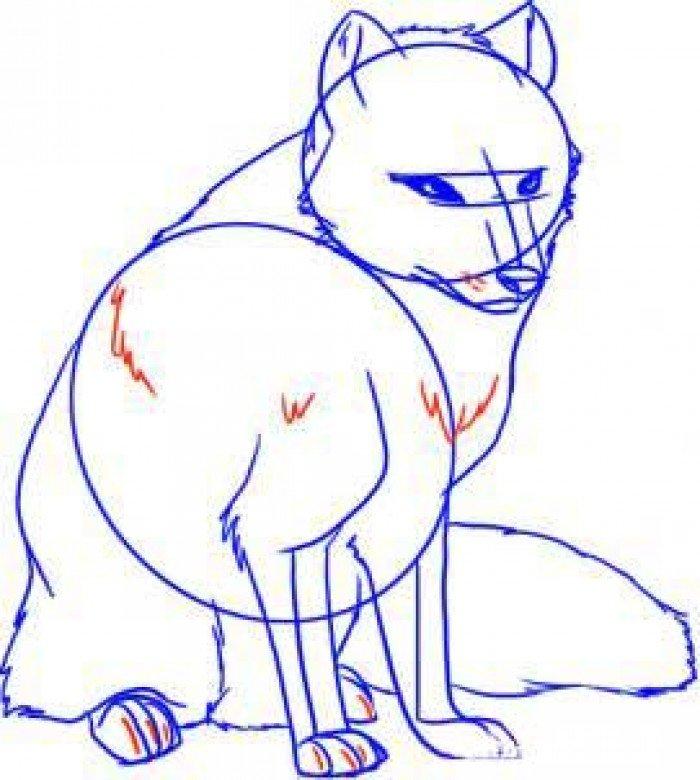 Як намалювати лисицю поетапно, фото 10
