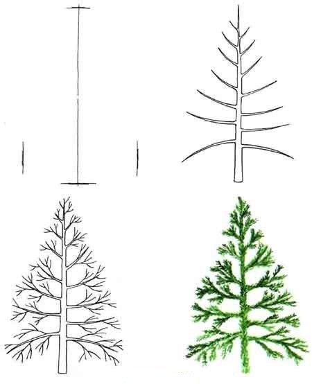 Как нарисовать елку, фото 18