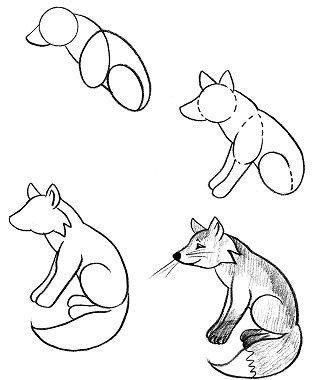 Як намалювати лисицю поетапно, фото 32